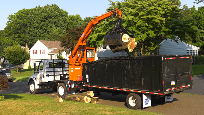 High quality equipment for tree service Southampton PA