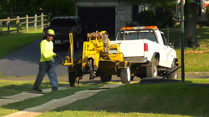 Protecting your Lawn while completing tree service Southampton PA